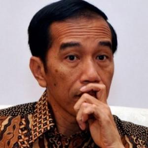 Presiden Jokowi Harus Berani Cabut Bebas Visa Untuk Tiongkok
