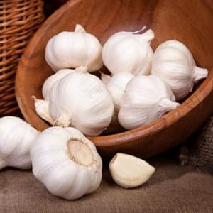 DPR: Genjot Produksi Bawang Putih Harus Pakai Inovasi