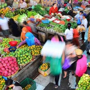 MUI Bersinergi dengan Pemerintah Wujudkan Ekonomi Umat Di Sektor Pertanian