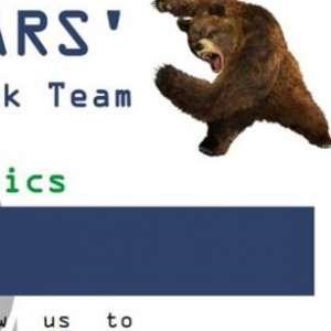 Jerman Selidiki Serangan Siber, Diduga Dari Kelompok Peretas Fancy Bear