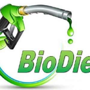 Industri Otomotif Kebut Pemakaian Biodiesel 30 %