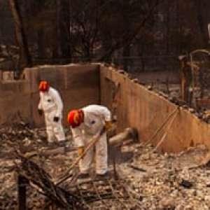 Angin Kencang Perburuk Kebakaran Hutan Di California