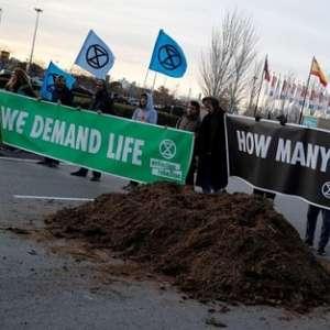 Kecewa Hasil KTT Perubahan Iklim, Aktivis Hijau Aksi Buang Kotoran Kuda