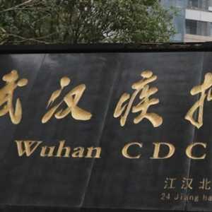 Menyibak Gagalnya Sistem Peringatan Dini China Terhadap Wabah Virus Corona