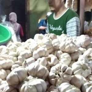Pedagang Pasar Kramat Jati: Harga Bawang Putih Mulai Turun