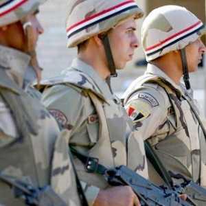 Siap Lawan Turki, DPR Mesir Setujui Intervensi Militer Ke Libya