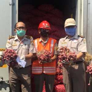 Di Tengah Pandemik, Balai Pertanian Surabaya Ekspor Bawang Merah Ke Thailand