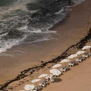 Seorang Bocah Terbawa Arus Di Pantai Palm Beach Mesir, 10 Orang Yang Menolongnya Ikut Terseret Dan Tewas