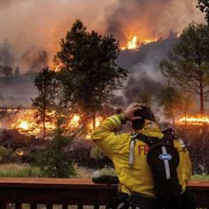 Dalam Sepekan, Api Hanguskan Satu Juta Hektar Lahan Di California