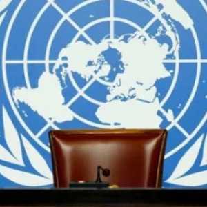Panggung PBB Dan Dunia Yang Saling Bergantung