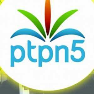 Dikuasai PTPN V, Kebun Sawit 2.823 Hektar Didesak Dijadikan Objek Reforma Agraria