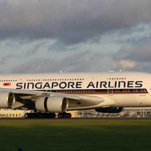Tak Punya Penerbangan Domestik, SIA Group Terpuruk Hingga PHK 4.300 Karyawan