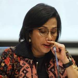 Relawan Jokowi: Sri Mulyani Memang Harus Diganti, Utang Negara Sudah Semakin Bengkak