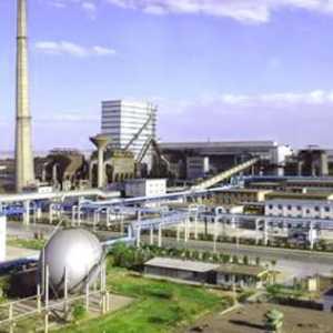 Energy Watch: Hilirisasi Nikel Jadi Langkah Strategis Industri Minerba Indonesia