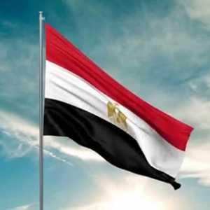 Mesir Memanas, Pembangkang Mohammed Ali Serukan Aksi Anti-Rezim Friday Of Victory