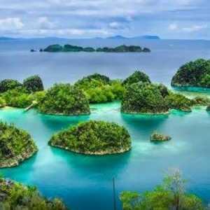 UNESCO Tetapkan Bunaken, Karimunjawa Hingga Merapi Sebagai Cagar Biosfer