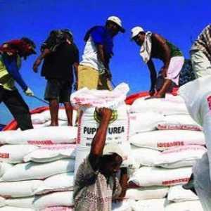 Kementan Maksimalkan Distribusi Pupuk Subsidi, Termasuk Pasokan Di Jawa Barat Dipastikan Aman