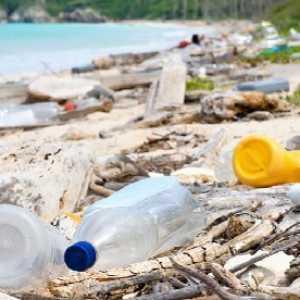 Dubes Havas: Pengelolaan Sampah Masih Jadi Masalah Serius Di Indonesia