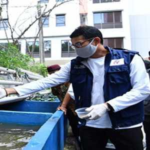 Hadapi Pandemi Covid-19, RIB Sokong Rusunawa Pengadegan Budidaya Aquaponik