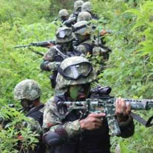 Kontak Tembak Kembali Terjadi Di Intan Jaya, 1 Prajurit TNI Gugur