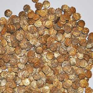 Bagai Durian Runtuh, Pria Inggris Temukan Harta Karun Rp 14 Miliar Saat Amati Burung