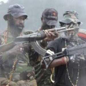 Pesawat MAF Dibakar KKB Di Intan Jaya, Pilot Dan Penumpang Selamat