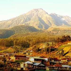 Ramalan Orang Dekat Jokowi: Presiden 2024 Yang Ari-arinya Ditanam Di Pulau Jawa (Gunung Lawu)