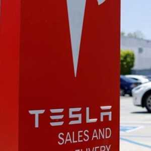 Tesla Pilih India Daripada Indonesia, GMNI DKI: Ada Dua Masalah Pokok Belum Selesai