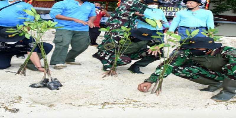 Tanam 500 Mangrove
