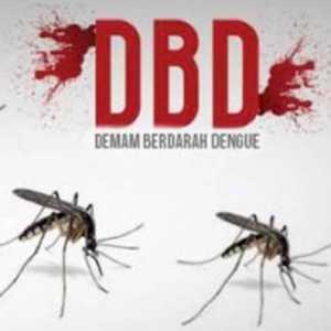 Masyarakat Juga Perlu Waspada DBD Di Masa Pandemi Covid-19