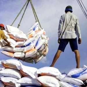 Polemik Impor Beras, CISA Sarankan Indonesia Belajar Dari India