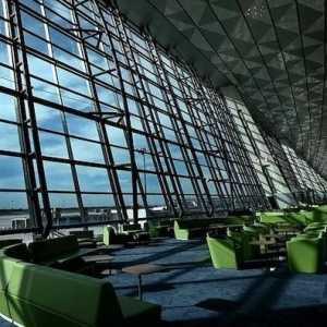 SDM Hingga Teknologi Jadi Kunci Membangkitkan Industri Penerbangan