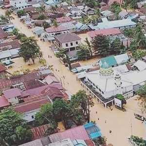 Sawit, Benarkah Penyebab Banjir Kalsel?