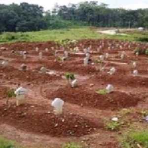 Pengembang Perumahan Harus Sisihkan 2 Persen Tanah Untuk Lahan Pemakaman