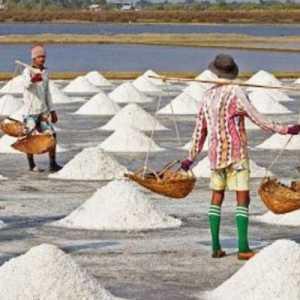 Pemerintah Akan Impor 3 Juta Ton Garam, PPP: Awasi Kebocoran Garam Industri Masuk Ke Pasar Rumah Tangga
