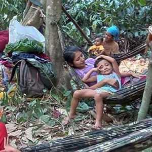Thailand Bantah Sudah Pulangkan Warga Myanmar Yang Melarikan Diri
