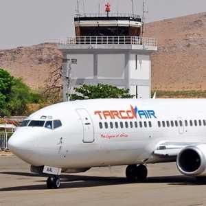 Dibajak Seekor Kucing, Pesawat Tarco Airlines Terpaksa Putar Balik