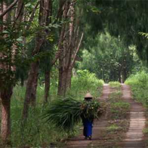 Perempuan Dan Laki-laki, Satu Kesatuan Yang Saling Menguatkan Dalam Pengelolaan Hutan