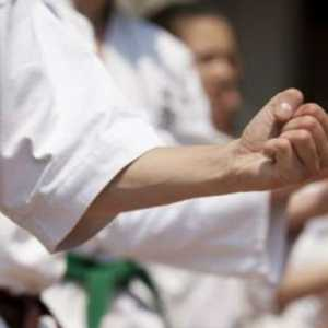Atlet Karate Putri Jepang Ayumi Uekusa Mengaku Alami Kekerasan Dan Dirisak Oleh Instrukturnya