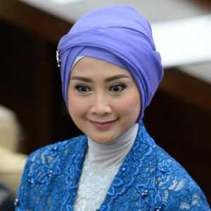 Desy Ratnasari 'Dicolek' Caleg Gagal, DPW PAN Jabar Beri Penjelasan