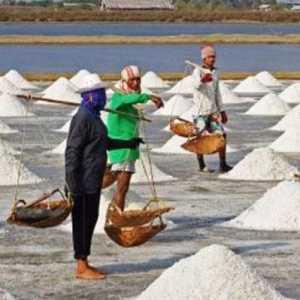 Gapmmi: Kebutuhan Meningkat Tapi Garam Lokal Belum Bisa Untuk Industri