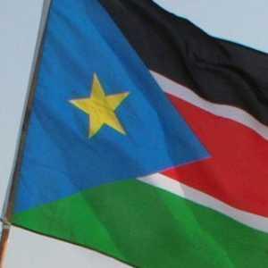 Rombak Pemerintahan, Jenderal Militer Hingga Wamenhan Sudan Selatan Diganti