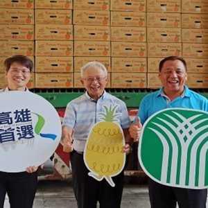 Perkuat Dukungan, Jepang Kembali Borong 17 Ton Nanas Taiwan