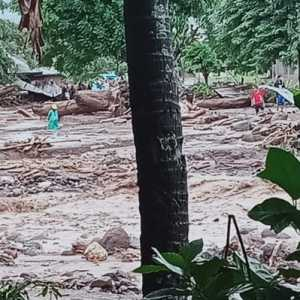 Banjir Bandang Flores Timur, 23 Warga Meninggal Dunia, 2 Orang Masih Hilang