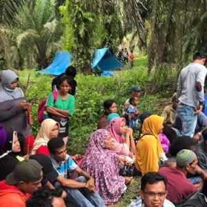 Istana Minta Panglima TNI Dan Kapolri Lindungi Petani Sawit Pelalawan