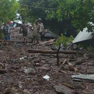 Update Banjir Flores Timur: 41 Warga Meninggal Dunia, 27 Orang Masih Hilang